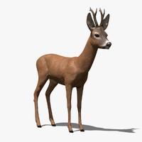 Buck 3D models