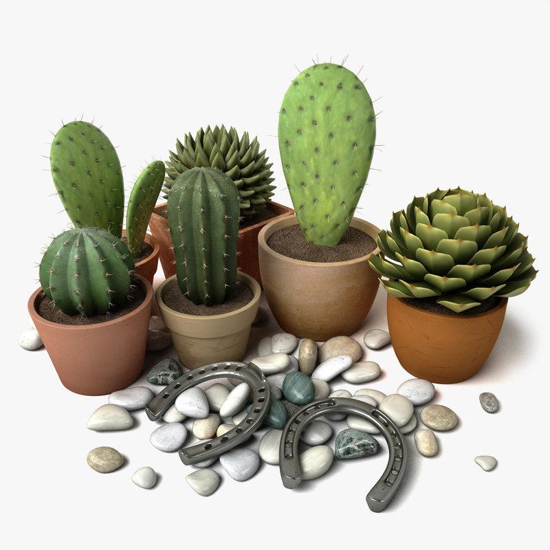 Cactus_Group_#1_Main1.jpg