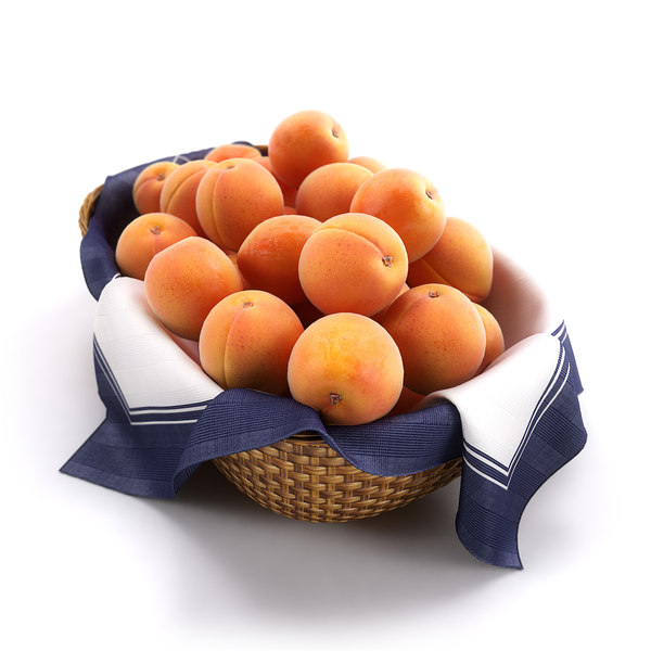 Basket of Apricots HQ 3D Models
