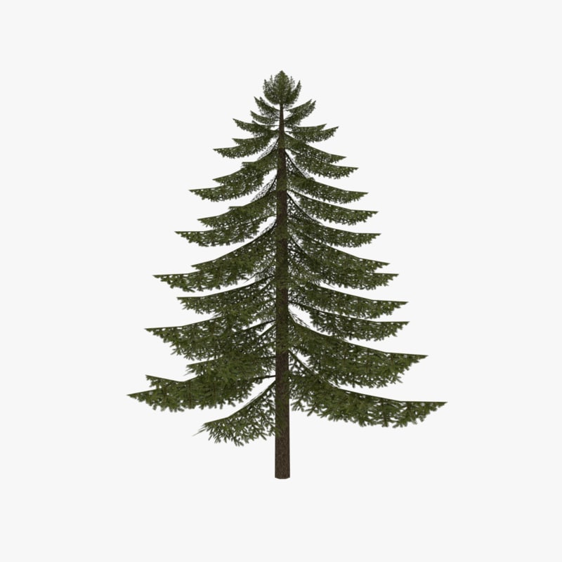 Low poly fir tree type one