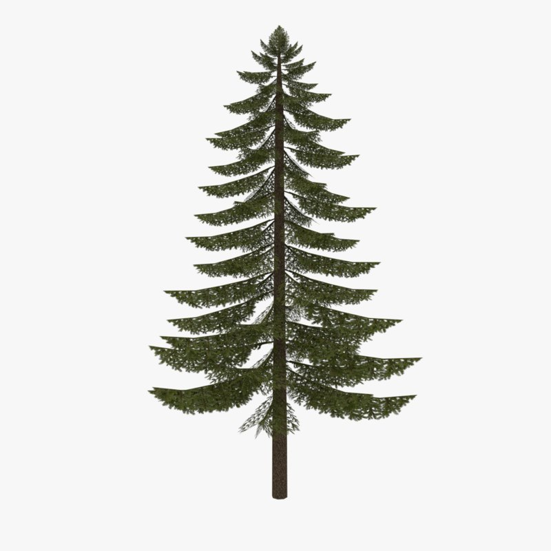 Low poly fir tree type two