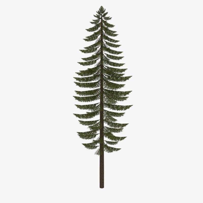 Low poly fir tree type three