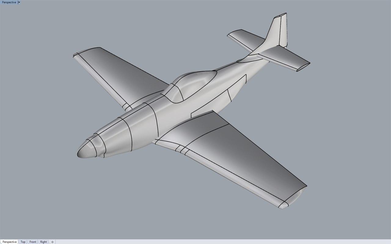 plane P51_1.jpg