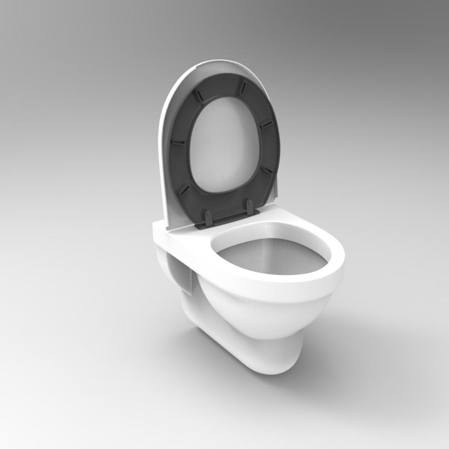 toilet_bowl01.jpg