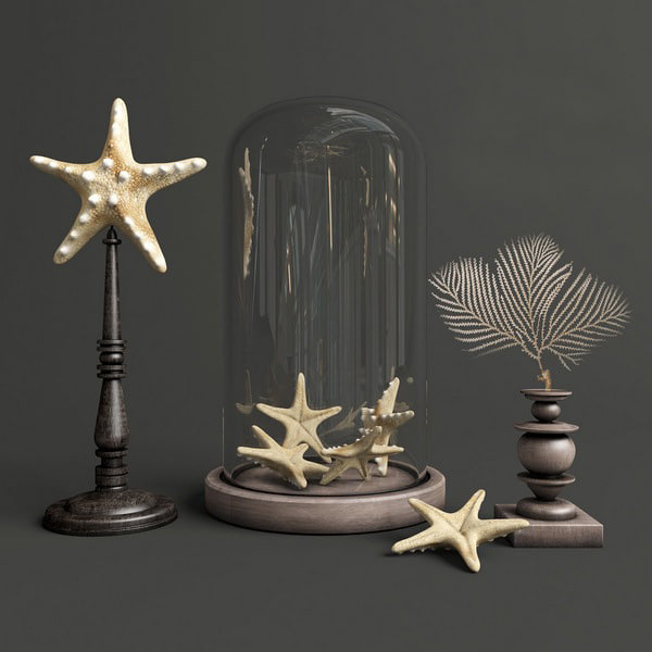Decor Starfish