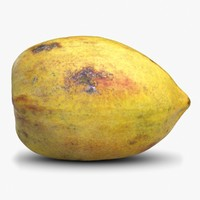 papaya 3D models
