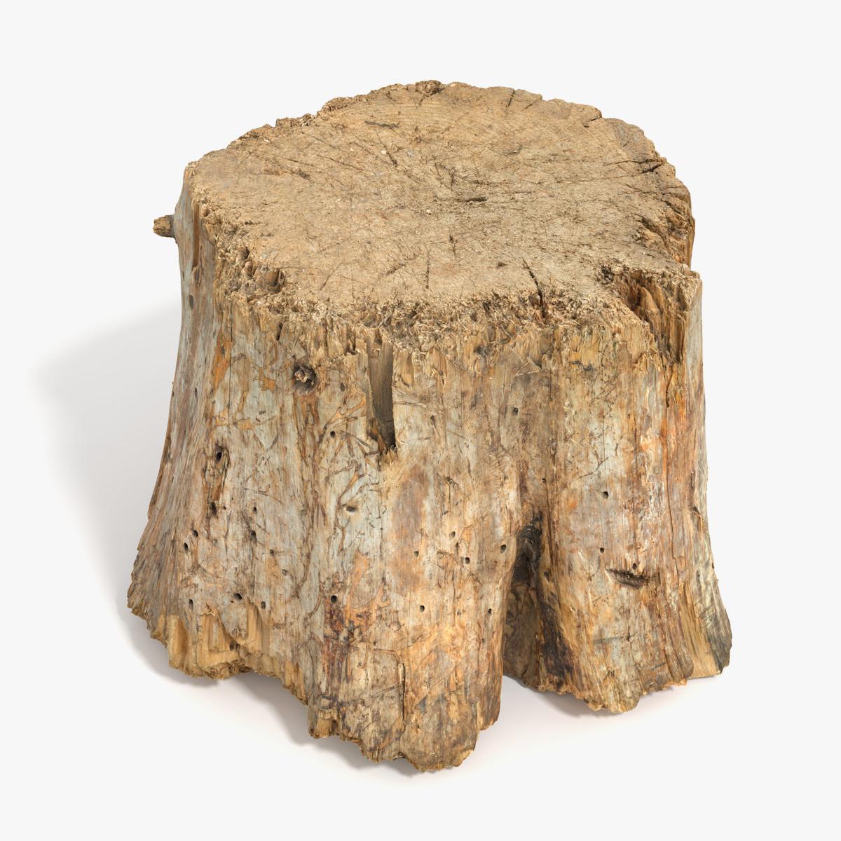 Log_big_signature_new.png