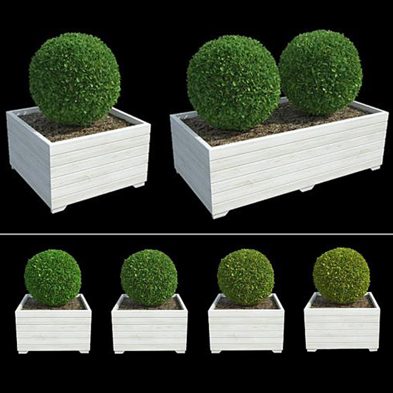 Bushes in Boxes II
