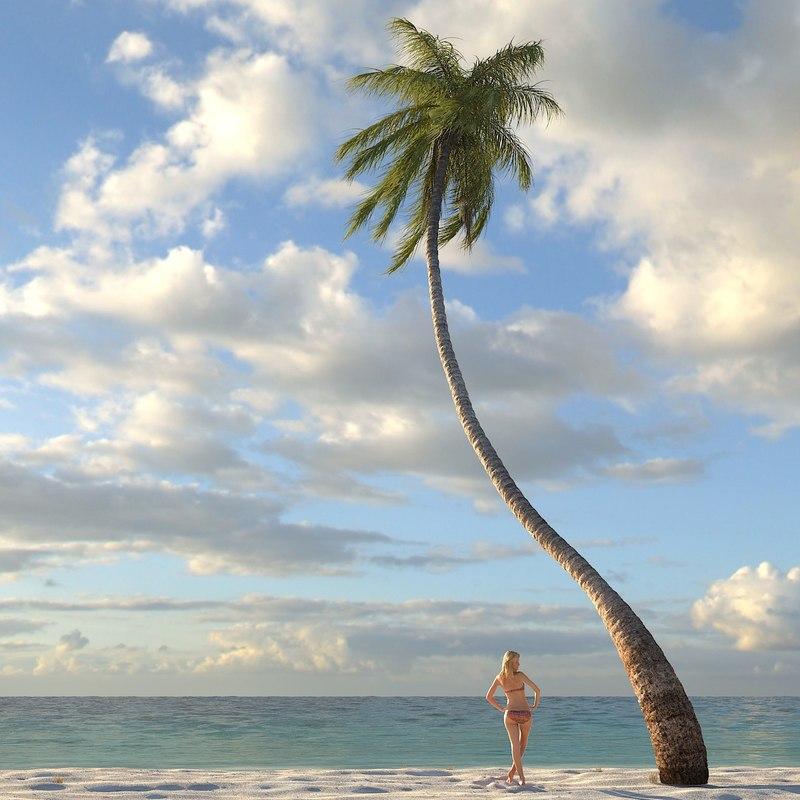 palm_coconut018_dusk_f_0000.jpg