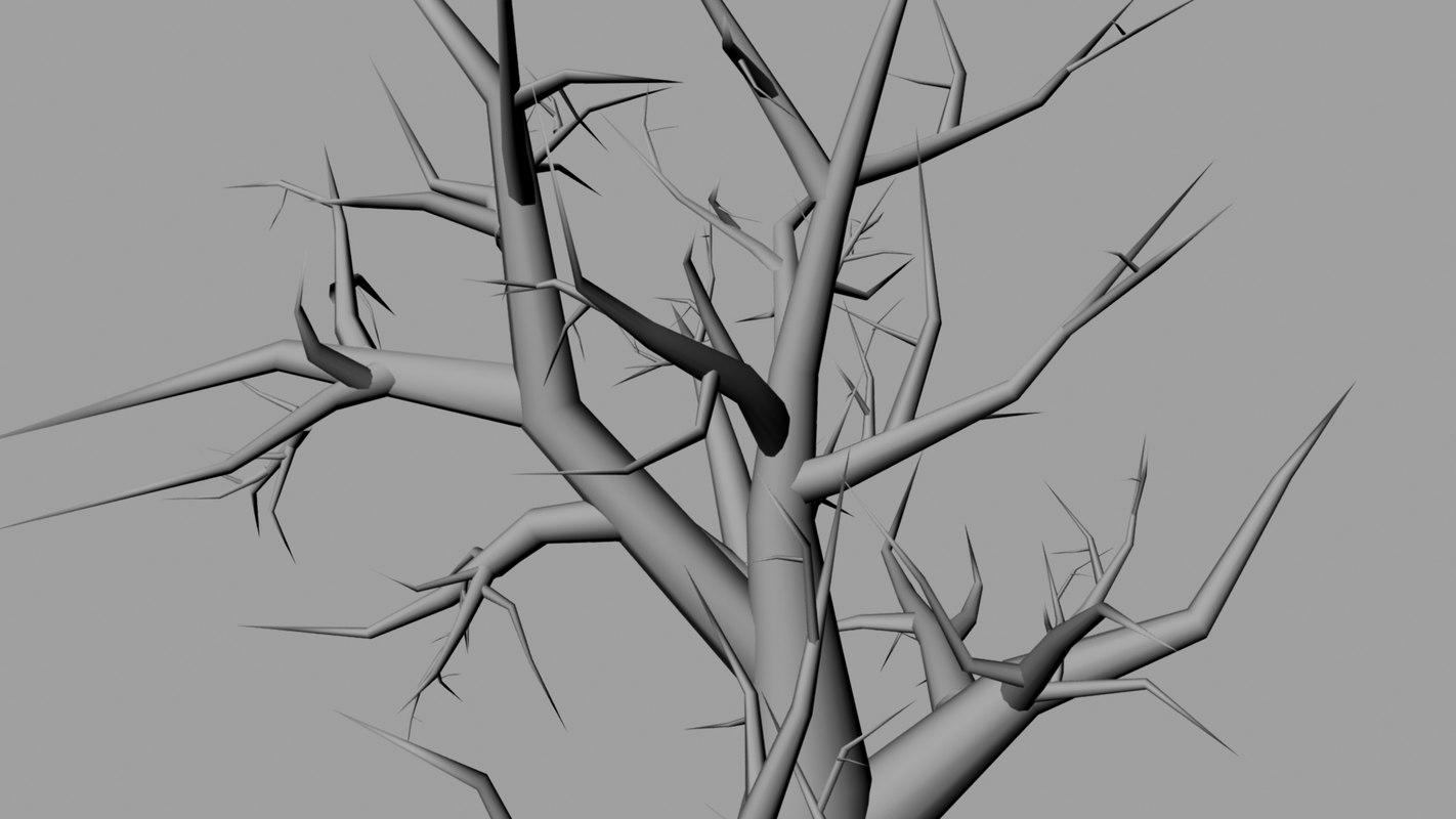 zamora_tree_1.jpg