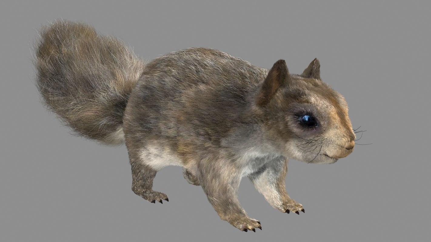 squirrel fur hair max
