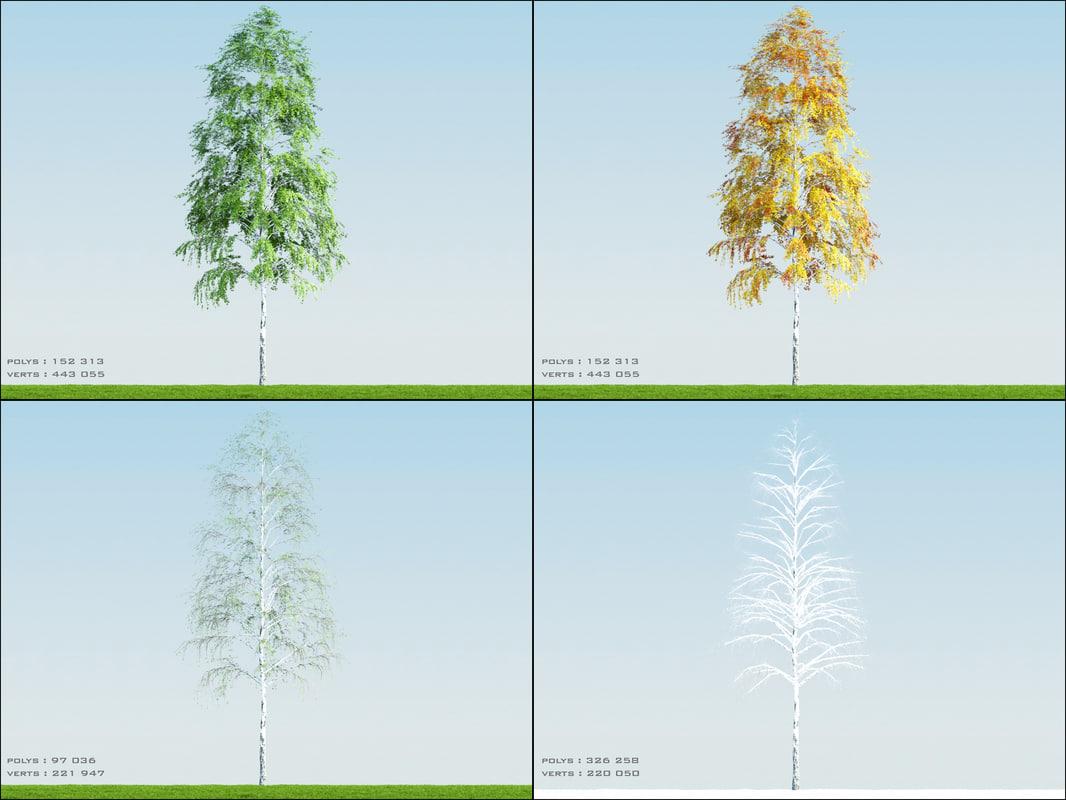 Birch003_PDF.jpg