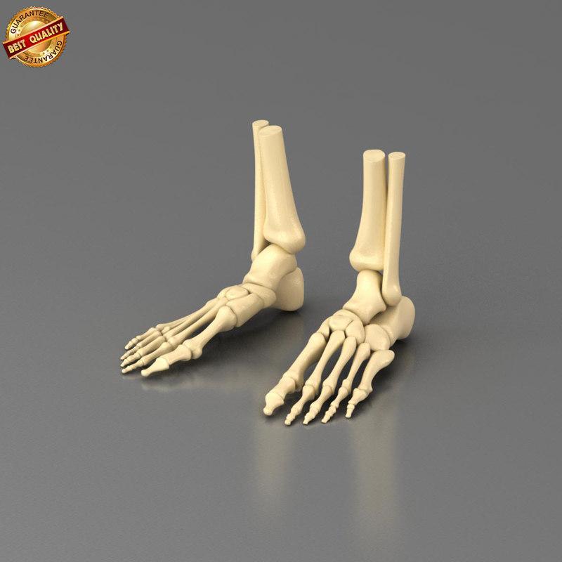 foot_skl_view_1.jpg