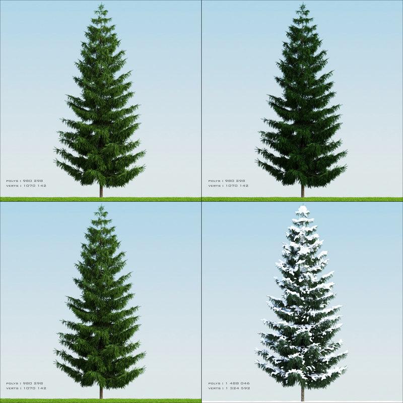 Pine002_PDF.jpg