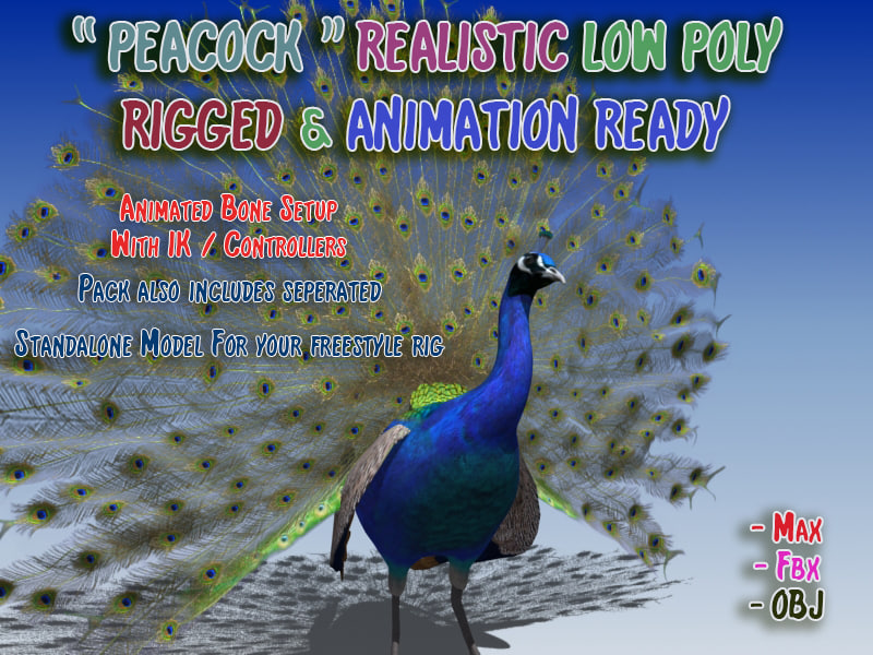 Peacock Low Poly Rigged Animated
