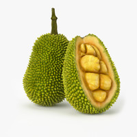 Jackfruit 3D models