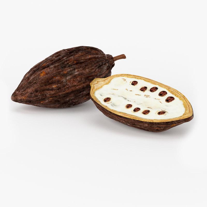 Realistic Cocoa Pod