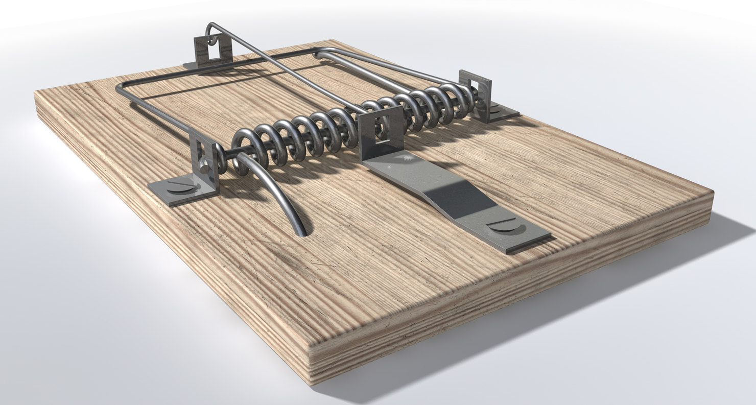 mouse-trap-1.jpg