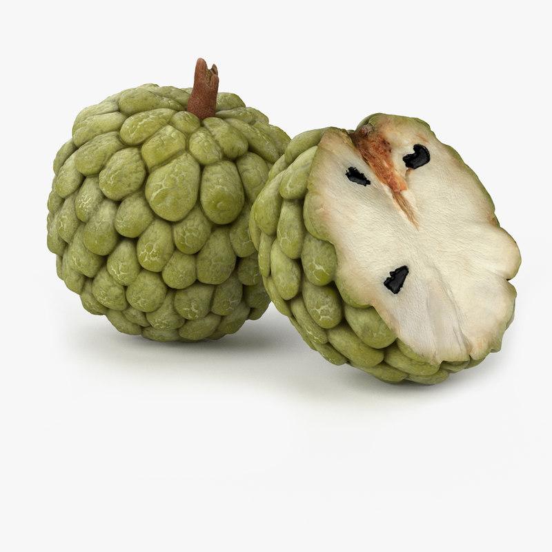 Realistic Anona Fruit