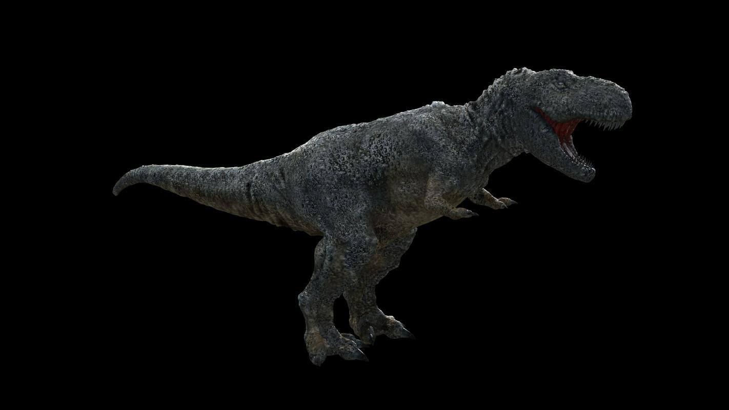 rex_diff_0001.jpg