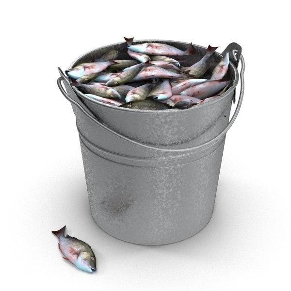 Max fish bucket for Bucket of fish