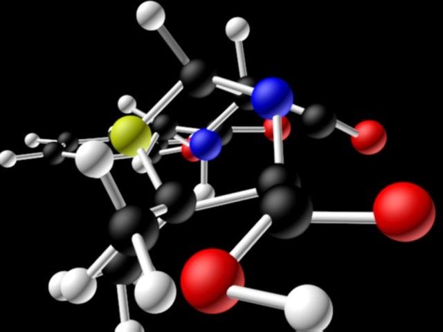 penecillin 1.jpg
