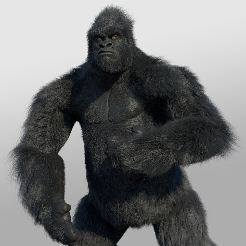 Gorilla (RIGGED)