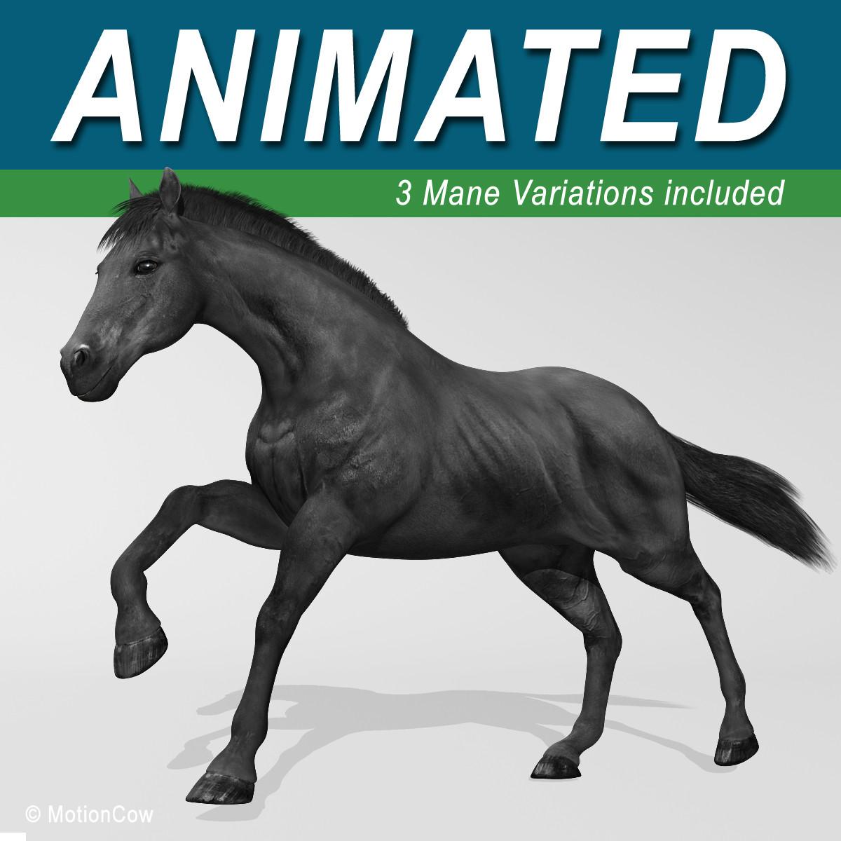 Black_Horse_2.jpg