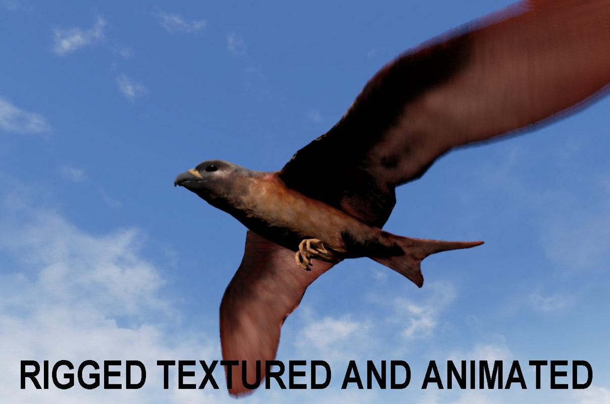 BirdWithTitle1.jpg