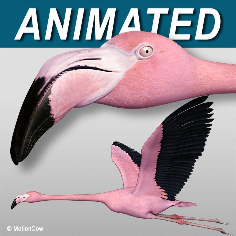 Flamingo Pink ( Flying )