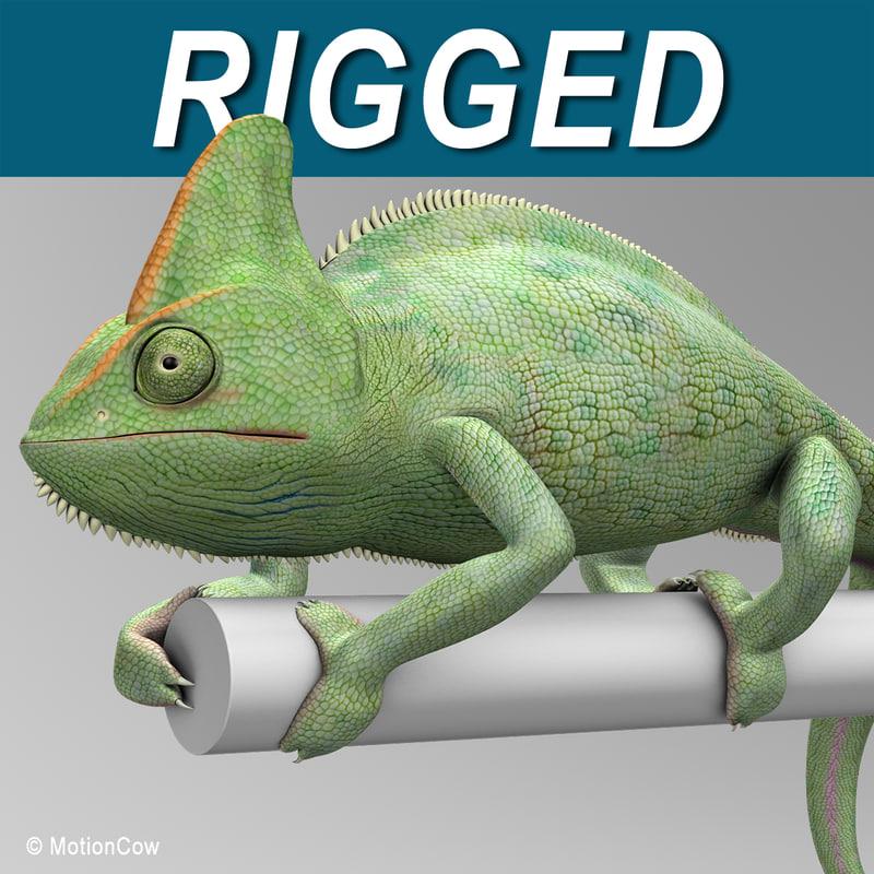 Chameleon_A.jpg