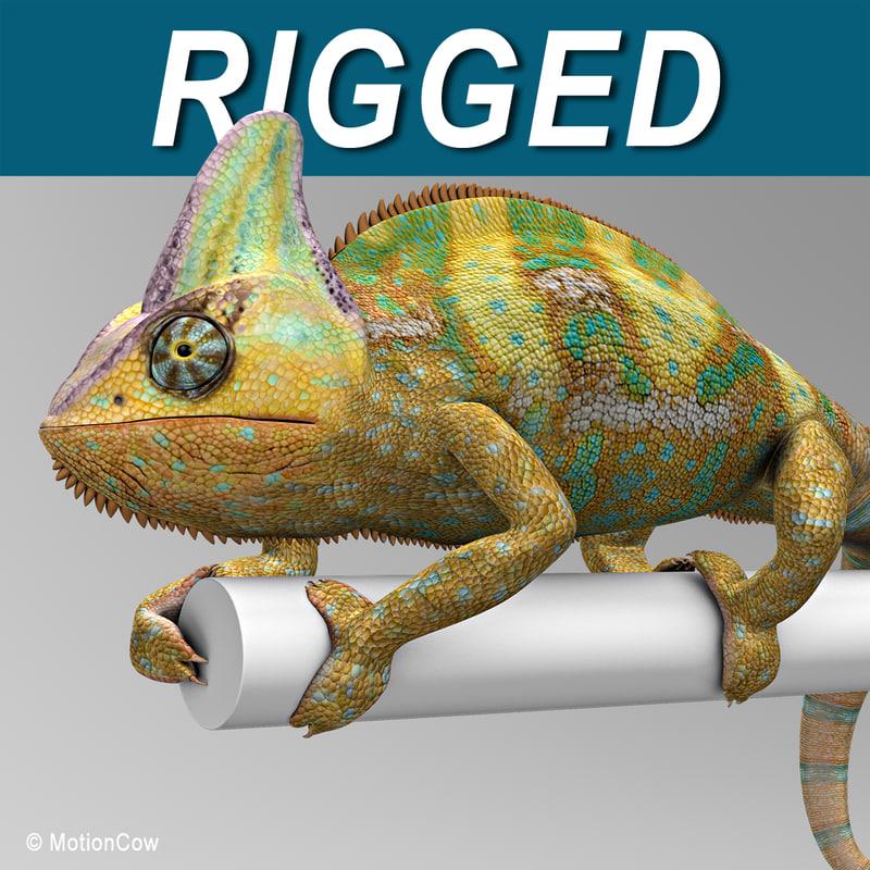 Chameleon_AColor.jpg
