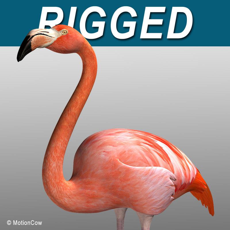 Flamingo_WFolded_A.jpg