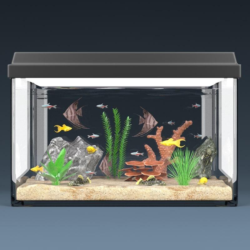 Aquarium Full2