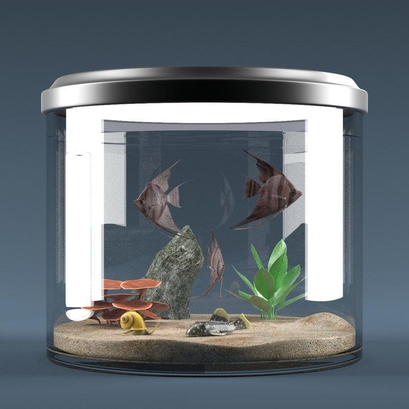 Aquarium Full3