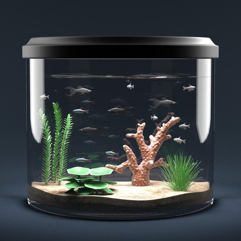 Aquarium Full4