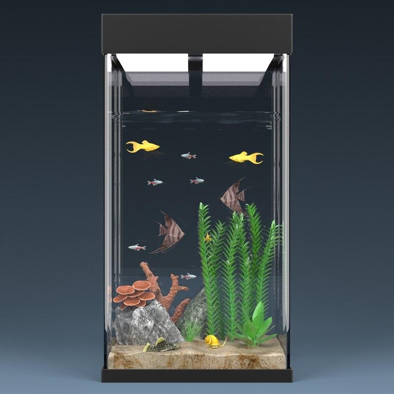 Aquarium Full6