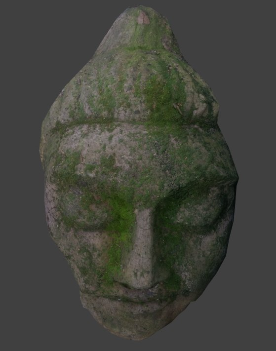 Mossy Stone Face