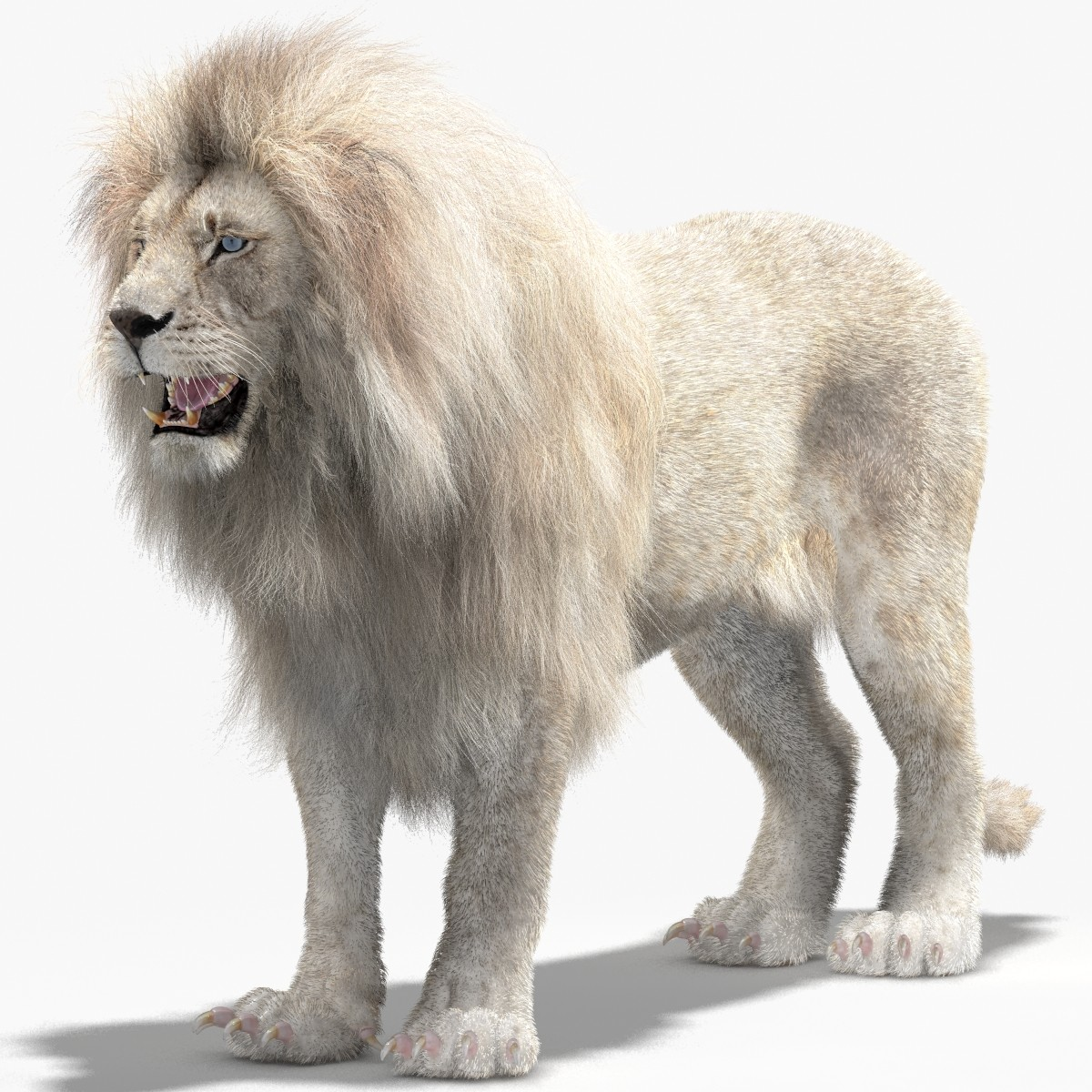 Lion-Mental-Ray-01.jpg