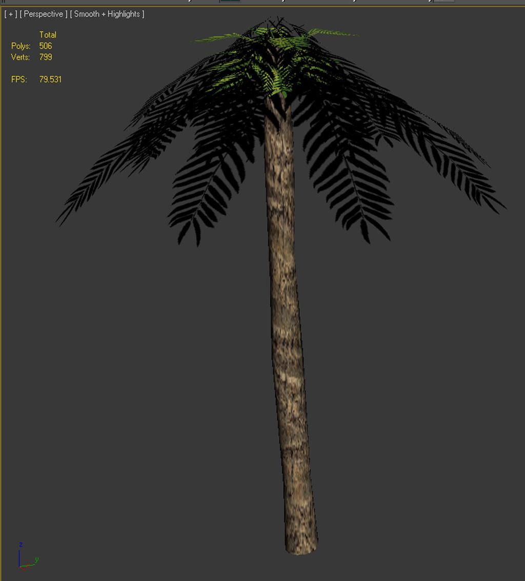 palmpic1.jpg