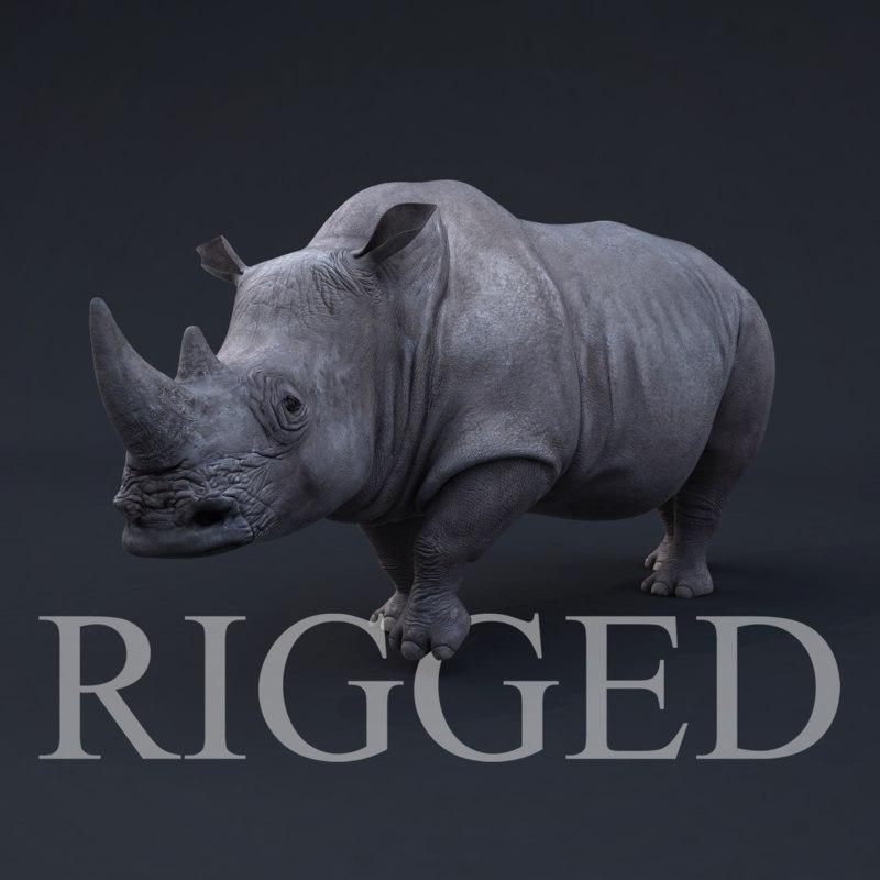 RhinoRig1.png