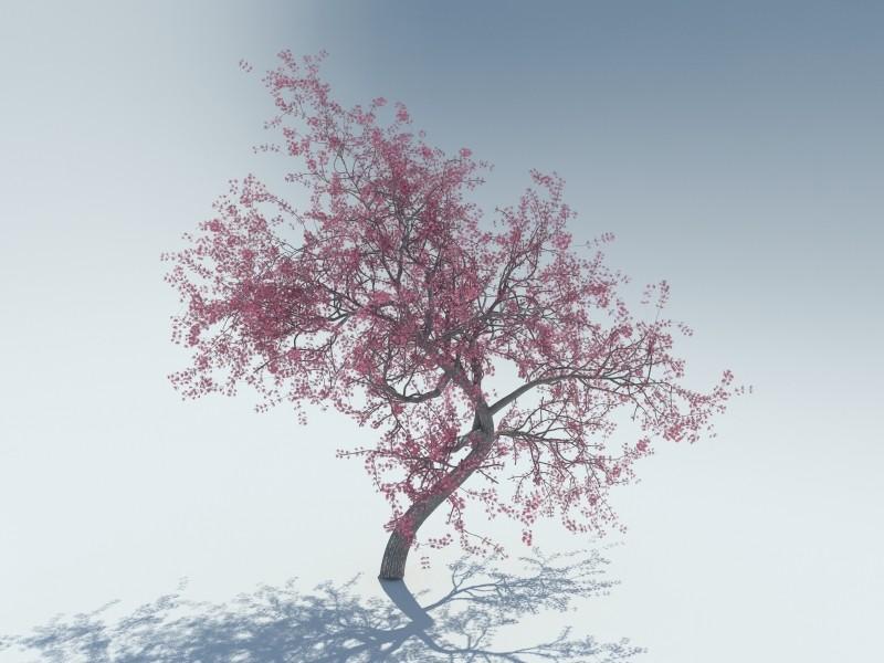 1 render.jpg