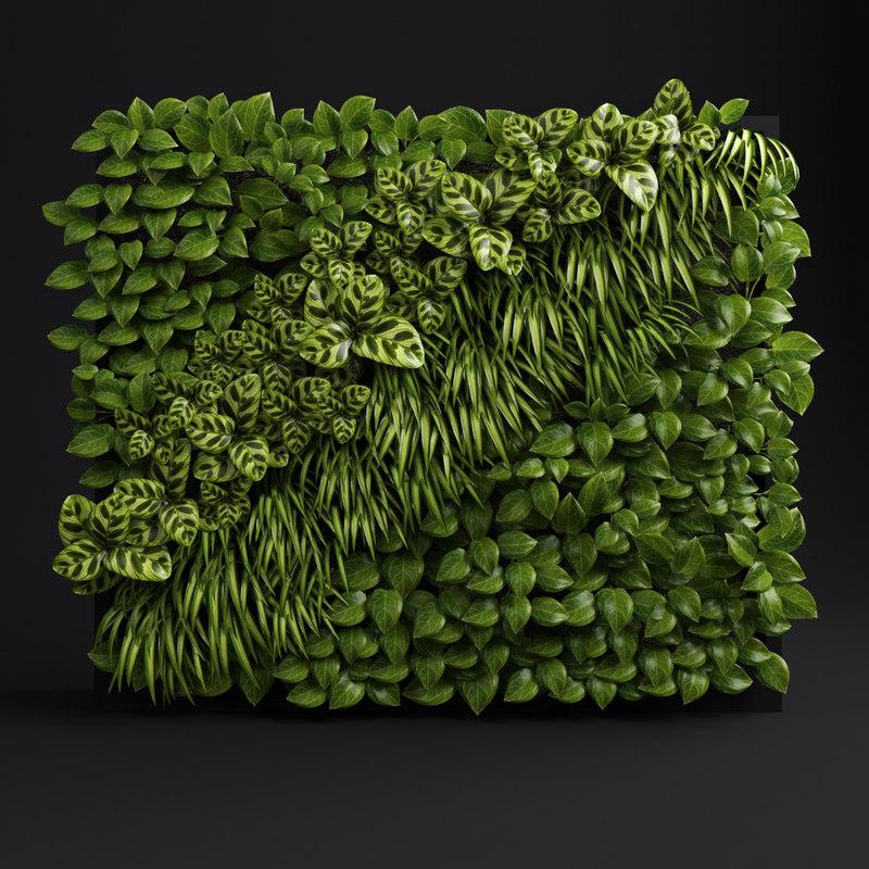 green wall_1.jpg