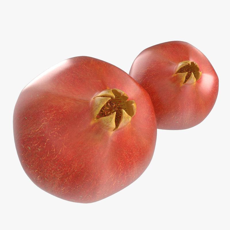 Pomegranate 3d model 00.jpg