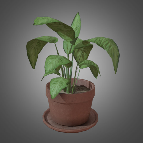 Potted Plant - Game Ready Allegorithmic Substances