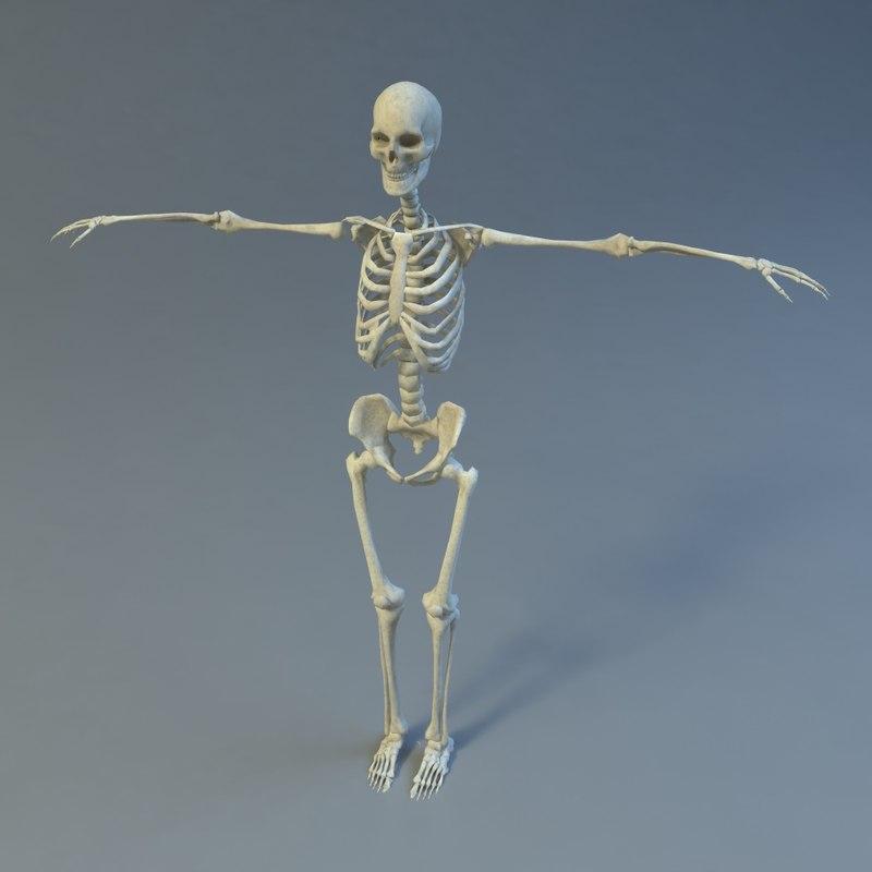 Skeleton_01.jpg