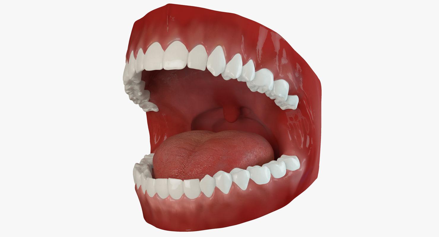 Mouth Animated 2.1 Premium
