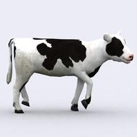 Calf 3D models