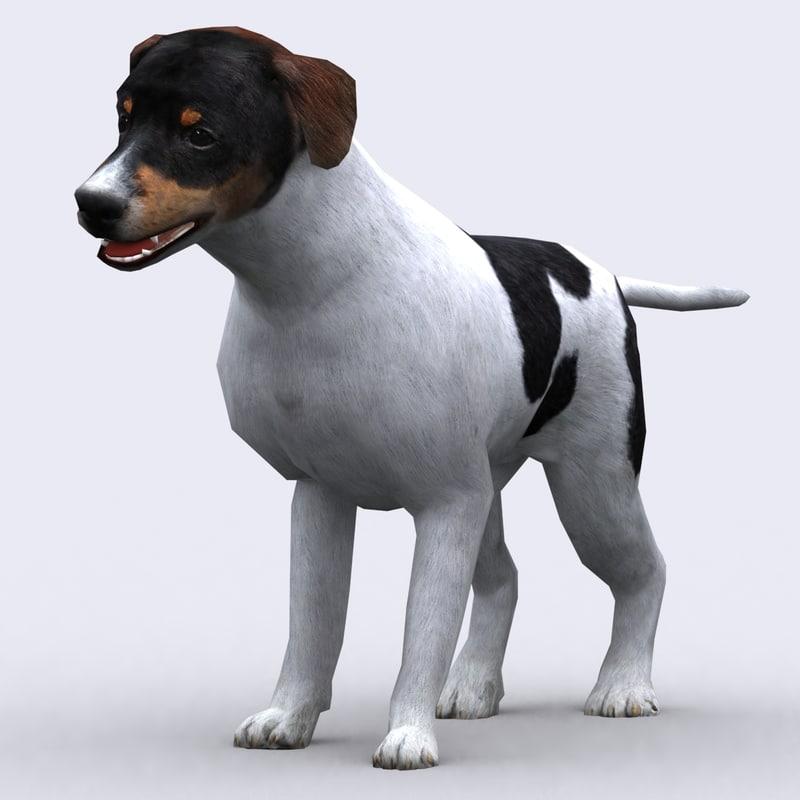 3DRT - Dog