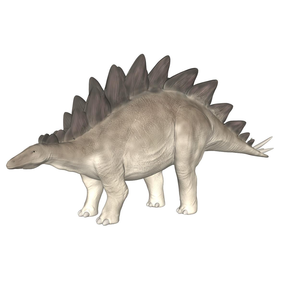 Stegosaurus(1)